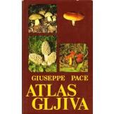 Atlas gljiva