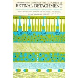 Controversial Aspects of the Management of Retinal Detachment