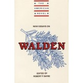 New Essays on Walden (The American Novel)